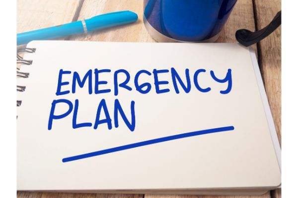 Estate Planning for Medical and Financial Emergencies